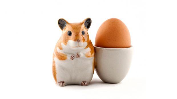 Quail Hamster Egg Cup