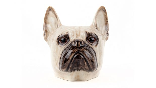 Quail French Bulldog Face Egg Cup