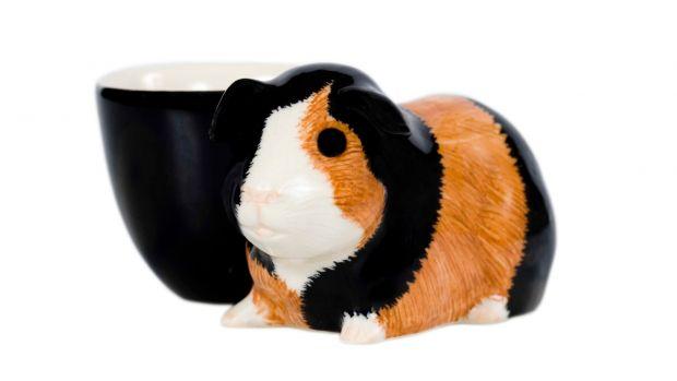 Quail Guinea Pig Multi Egg Cup