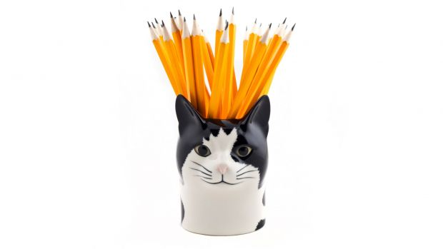 Quail Barney Cat Pencil Pot