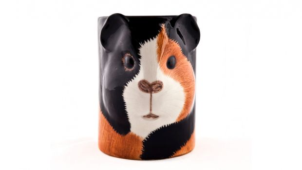 Quail Guinea Pig Multi Pencil Pot