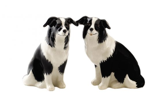 Quail Border Collie Salt & Pepper
